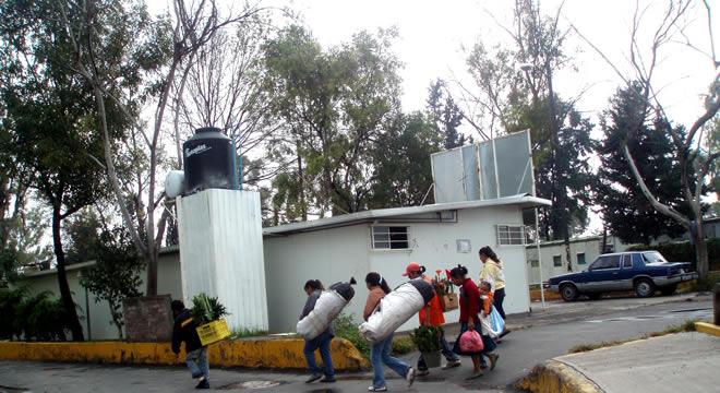 Reportajes metropolitanos for Mural de la casa del migrante